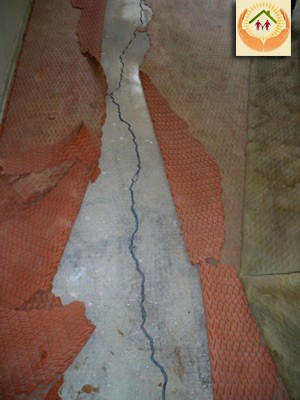 slab foundation cracks - 684×912