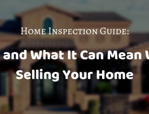 Home Inspection Guide: Mold and What It Can Mean When Selling Your Home